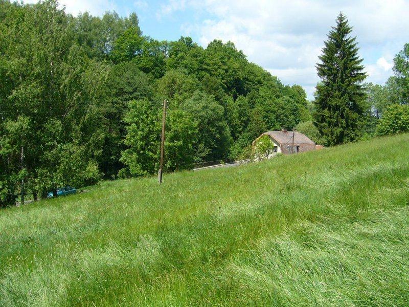 Orná půda, Borová
